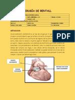 377430104-cirugia-de-bentall-informe