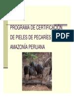 Programa de Certificacion Pecaries