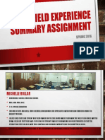 sp16 field experience summary assignment