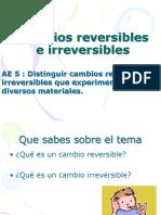 Cambios Reversibles e Irreversibles