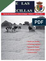 """Revista municipal de Bogajo """"Desde Las Torrecillas"""" - Nº1"""