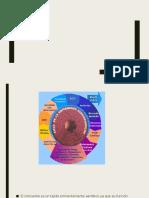fisiopatologia de cardiopatia isquemica.pptx