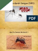 Presentasi Dbd Pkm Bungah