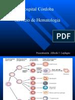 Leucemias Agudas y Cronicas HC