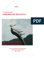 Teoría Del Aprendizaje Reflexivo - Daros, w. r.