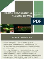 2. Hewan Transgenik & Kloning