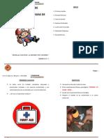 Manual Básico de Brigadistas