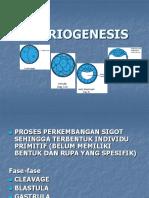 06-Embriogenesis