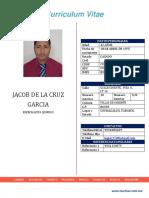 1 - Cv Gcg Oficial Marinsa Ing. Jacob Completo