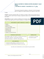 Formulario en Terreno CPHS D.S. N54 - SAP 107400651-11-12