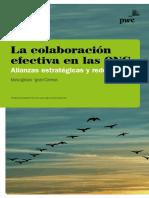 Colaboracion Efectiva Ong