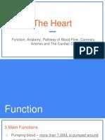 block 2 - the heart  c
