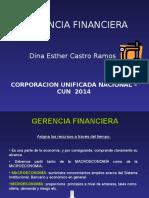 Gerencia Financiera Dina Castro