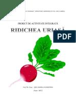 Proiect Pentru Def Rodichea Uriasa