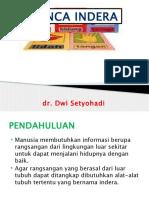 Panca Indra.pptx