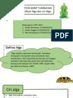 Alga- Protista Mirip Tumbuhan Kel 6 Fix(2)