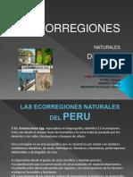 11_eecoregiones_del_Peru.pdf