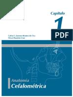 cefa.pdf