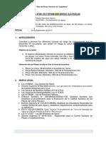 informe playa falta anexos (1).docx