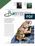 Biodiversitas 56 Enfermedades Anfibios