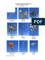 Catalogo_floristico_del_Distrito_de_Chig.pdf
