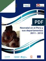 MUERTE NEONAT. ESTADISTICA.pdf