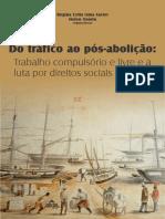 Do tráfico ao pós-abolição - E-book