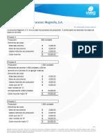 Costeo Por Procesos Magnolia, S.A2.