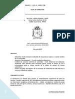 Informe Calor de Combustiong1.Docxcasi (1)