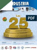 53_-revista-industria-n-12-1.pdf