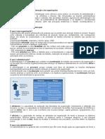 Introdução à Administração e às Organizações.odt