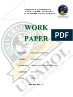 work paper.docx