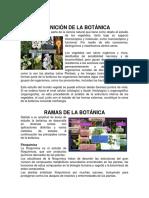 Primera Semana Definicion de Botanica