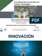 Presentacion Vinculacion Desarrollo de Proyectos de Innovacion Tecnologica