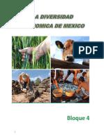 La Diversidad Economica de Mexico