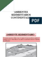 9 Ambientes Sedimentarios i