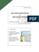 CAP I LIGANTES LAB C [Modo de compatibilidad].pdf