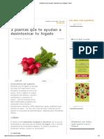 3 plantas que te ayudan a desintoxicar tu hígado _ Salud.pdf
