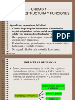 Moleculas_orgánicas_Proteínas y Ácidos Nucleicos (1)