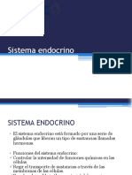 17. Sistema Endocrino(1)