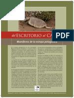 Guía de mamíferos de la estepa patagónica