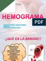 hemograma-160528200830