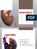 insuficienciarenalcronica-130226112853-phpapp01