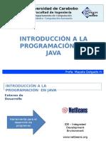 273411069 Programando en Java