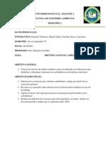 INFORME BIOQUIMICA.pdf