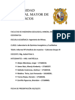 Informe Final - Laboratorio Quimica
