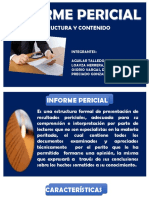 INFORME-PERICIAL
