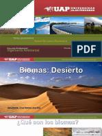 Desierto . Cruz Ramos Ana