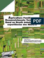 Livro Agricultura Familiar NEDETs eBook