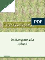 3. Ciclos Biogeoquímicos (c)